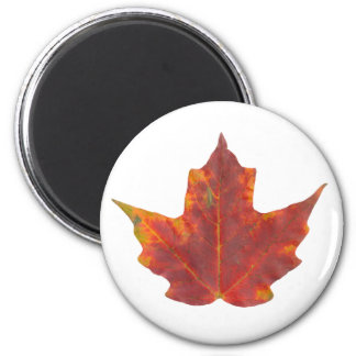 Red Maple Leaf 2 Inch Round Magnet
