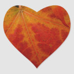 Red Maple Leaf Abstract Autumn Nature Photography Heart Sticker