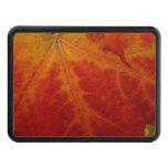 Red Maple Leaf Abstract Autumn Nature Photography Hitch Cover