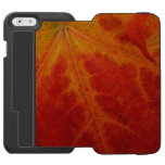 Red Maple Leaf Abstract Autumn Nature Photography iPhone 6/6s Wallet Case