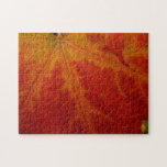 Red Maple Leaf Abstract Autumn Nature Photography Jigsaw Puzzle