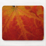 Red Maple Leaf Abstract Autumn Nature Photography Mouse Pad