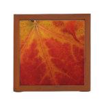 Red Maple Leaf Abstract Autumn Nature Photography Pencil/Pen Holder