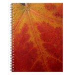 Red Maple Leaf Abstract Autumn Nature Photography Spiral Notebook