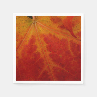 Red Maple Leaf Abstract Autumn Nature Photography Standard Cocktail Napkin