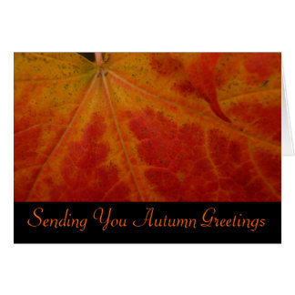 Red Maple Leaf Autumn Greetings Card