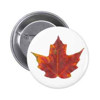 Red Maple Leaf Buttons