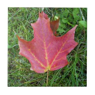 Red Maple Leaf Ceramic Tile