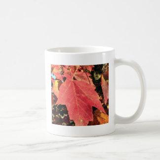 RED MAPLE LEAF IN AUTUMN CLASSIC WHITE COFFEE MUG