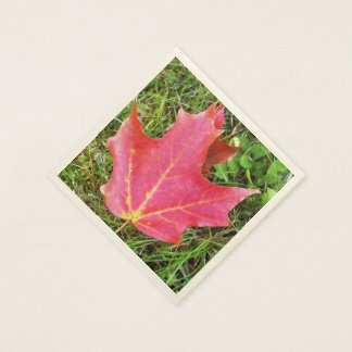 Red Maple Leaf on Grass Standard Cocktail Napkin