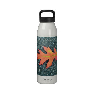 Red Maple leaf on the road Drinking Bottles