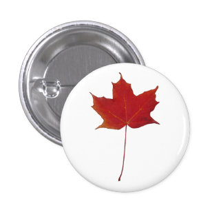 red maple leaf pinback button