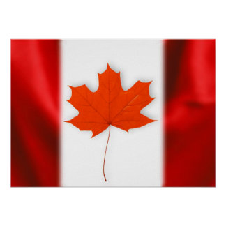 Red maple leaf poster