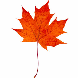 Red maple leaf statuette