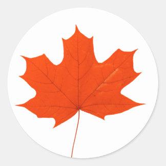 Red maple leaf round sticker