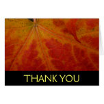 Red Maple Leaf Thank You Card (Blank Inside)