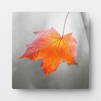 Red Maple Leaf - Velvet Autumn Plaque