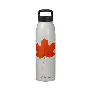 Red maple leaf water bottles
