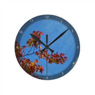 Red maple leaves against blue sky clocks