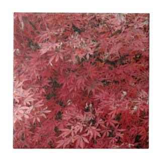 red maple leaves ceramic tile