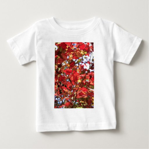 Red Maple Leaves in the Fall Tshirts