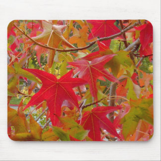 Red maple leaves mousepad