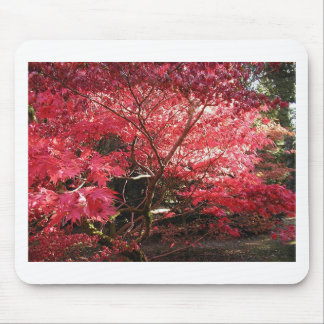 red maple mouse pad