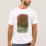 Red Maple tree in autumn colors, near Concord, 2 T-Shirt