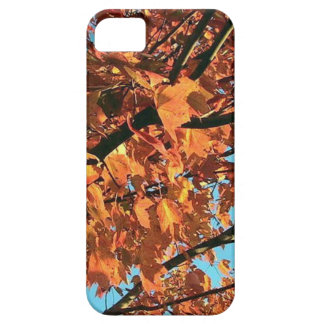 RED MAPLE TREE IN AUTUMN FALL iPhone SE/5/5s CASE