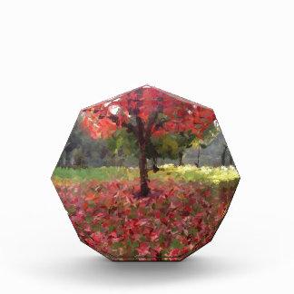 Red Maple Tree Photography Acrylic Award