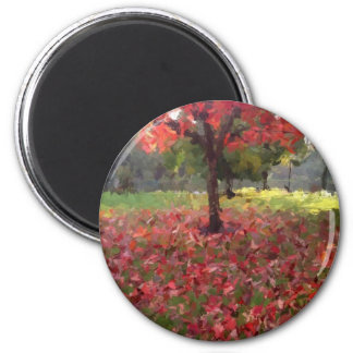 Red Maple Tree Photography Magnet