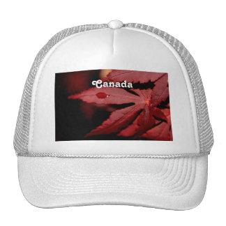 Red Maple Trucker Hat