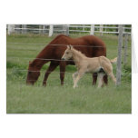 Red Mare & Blonde Filly Greeting Card