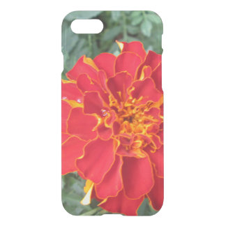 Red Marigold Flower iPhone 8/7 Case
