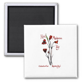 Red Marisposa Lily Magnet