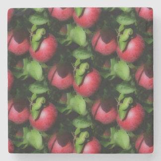 Red McIntosh Apples Nature Art Pattern Stone Coaster