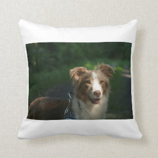 red merle aussie.png throw pillow