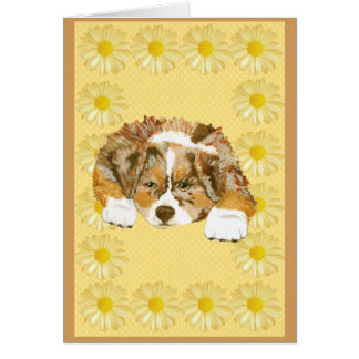 Red Merle Aussie Pup Add Own Text Notecard