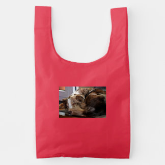 red merle mini aussie sleeping 2 reusable bag
