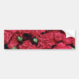 Red miniature carnations flowers bumper stickers