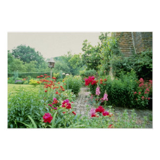 Red Mixed Cottage Garden - Peony, Pyrethrum, Alliu Poster