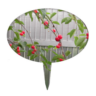 Red Montmorency cherries on tree in cherry orchard Cake Topper