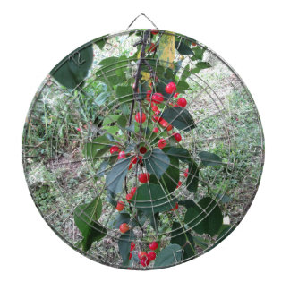 Red Montmorency cherries on tree in cherry orchard Dart Board