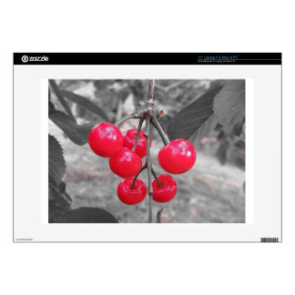 """Red Montmorency cherries on tree in cherry orchard Decal For 15"""" Laptop"""