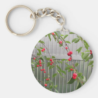 Red Montmorency cherries on tree in cherry orchard Keychain