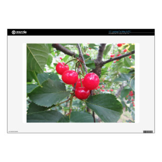 """Red Montmorency cherries on tree in cherry orchard Skins For 15"""" Laptops"""