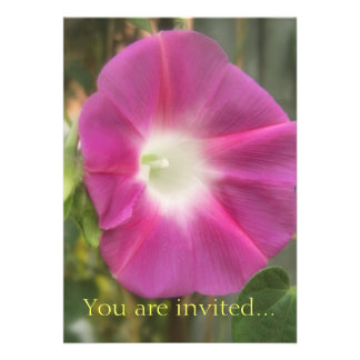 Red Morning Glory Flower Personalized Invitations