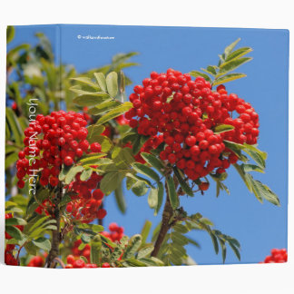 Red Mountain Ash Berries 3 Ring Binder