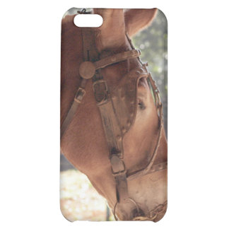 Red Mule Cover iPhone 5C Cases