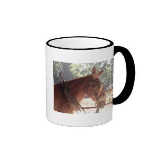 Red Mule Cup2 Mugs